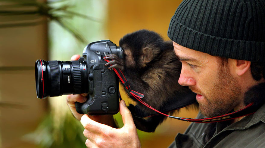 16-animals-with-a-passion-for-photography-7
