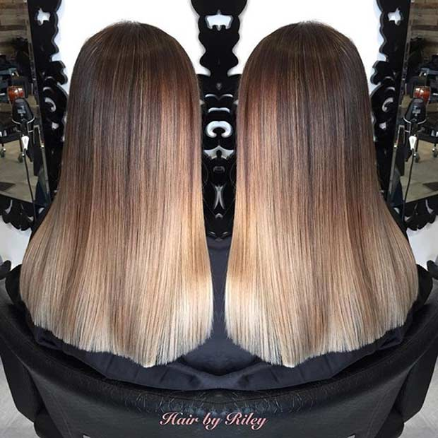 13 Brown and Blonde Hair Colourmelt