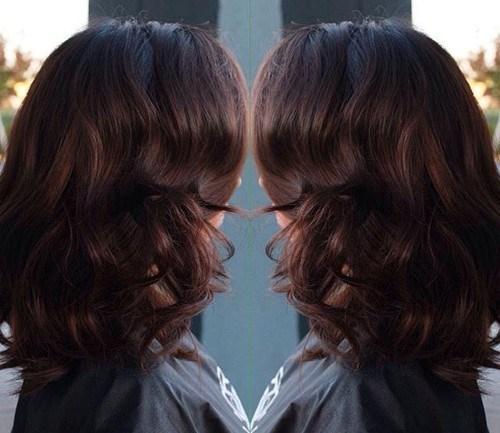 2-dark-chestnut-brown1
