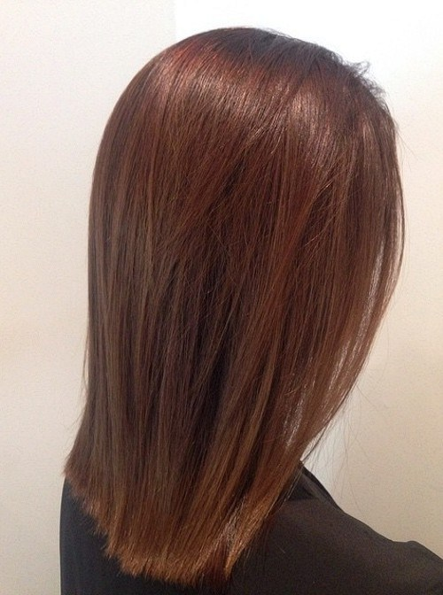 3-reddish-brown-with-a-golden-sheen1