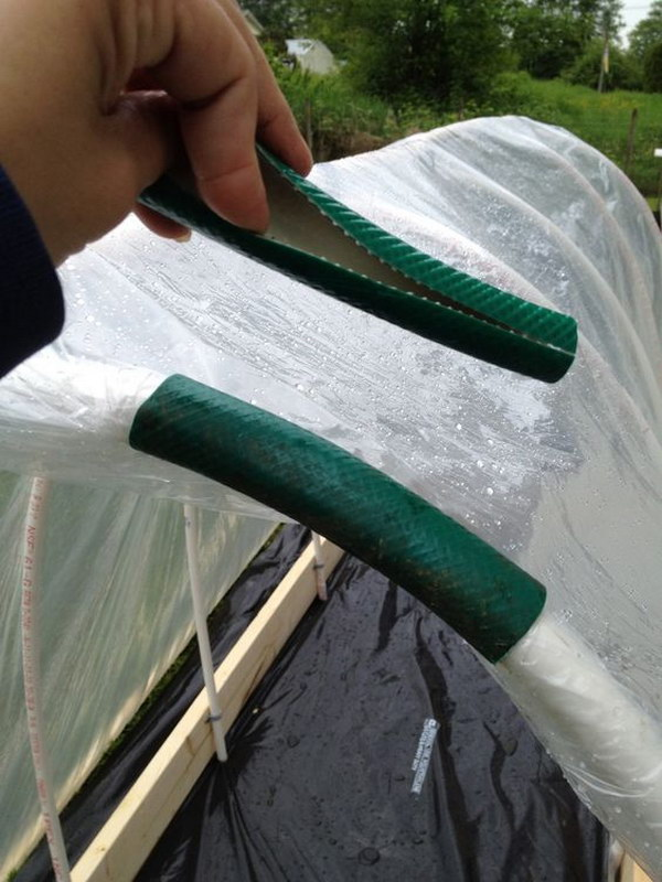 14 Use An Old Hose To Keep Plastic On A Raised Bed Garden