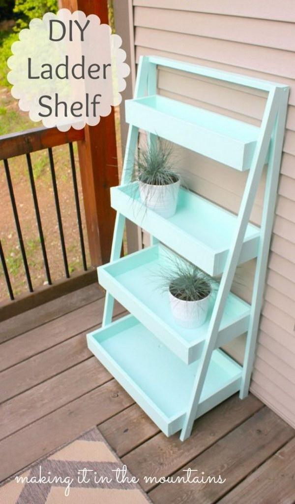 1 DIY Ladder Shelf
