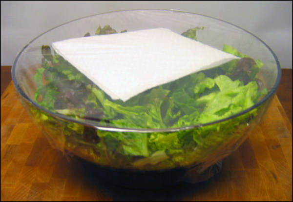 26 Avoid Limp Lettuce with Paper Towel