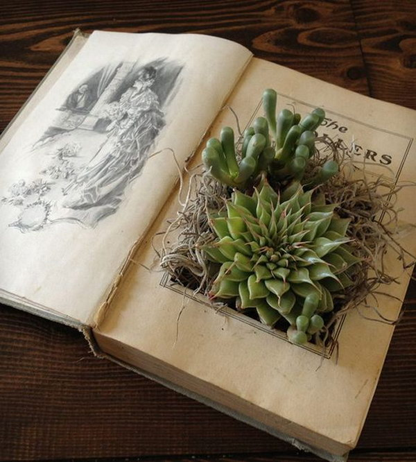 3 DIY Vintage Book Planter
