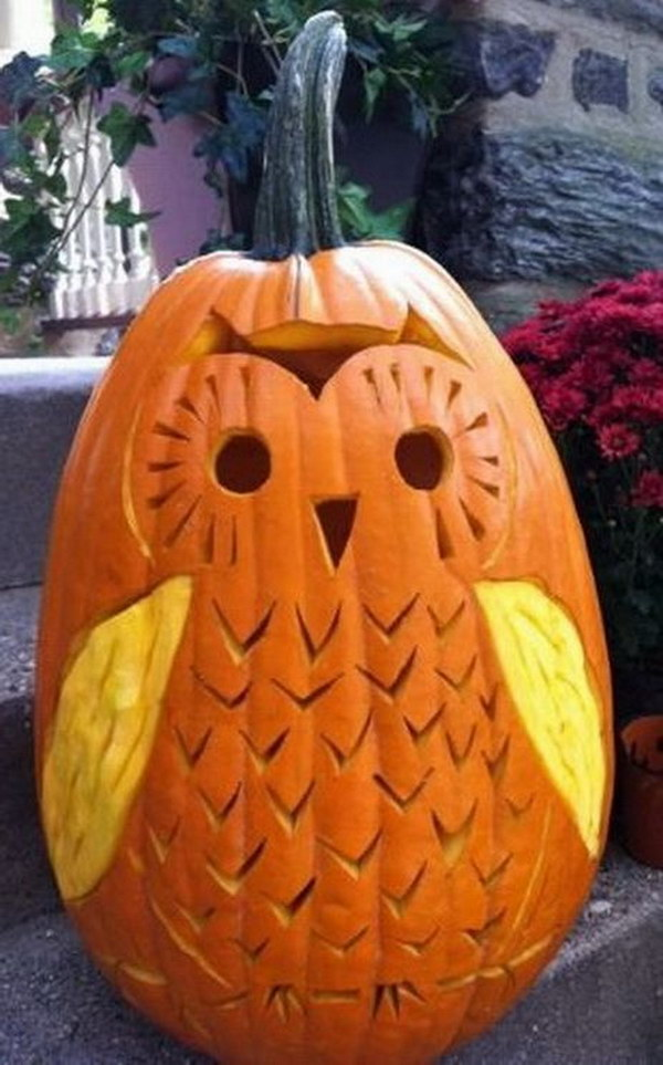 1 Cute Owl Pumpkin Carving