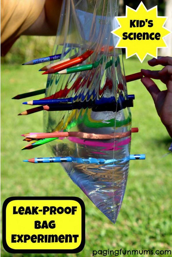 1 Leak-Proof Plastic Bag  Kids Science Experiment