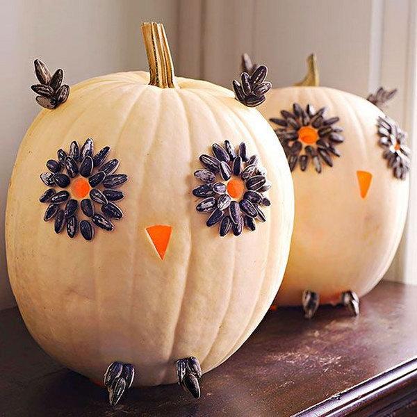 10 Easy Carved Owl Pumpkins for Halloween