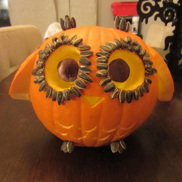 10 Little Owl Carved Pumpkin with Wings