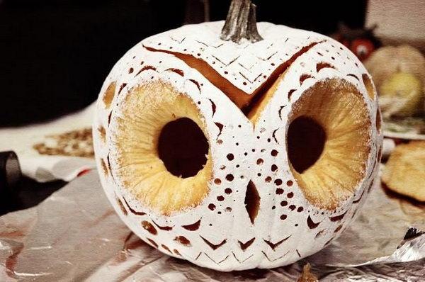 19 DIY Owl Pumpkin