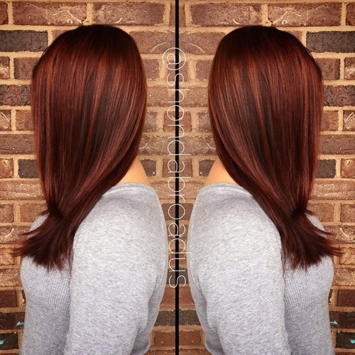 1 chestnut brown hair color