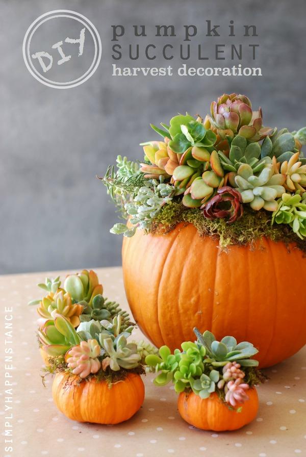 25 Pumpkin and Succulent Centerpiece