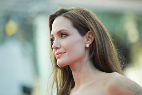 27 angelina jolie lovely pecan shade of brown hair