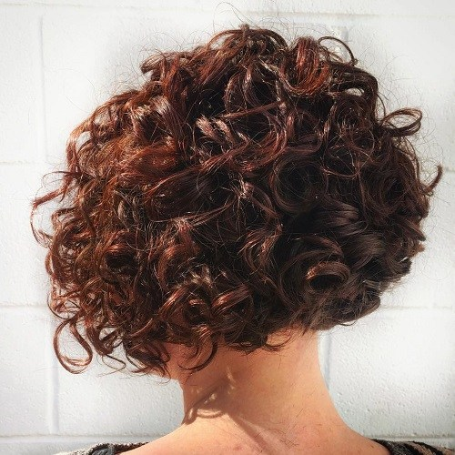 7 short curly mahogany bob hairstyle