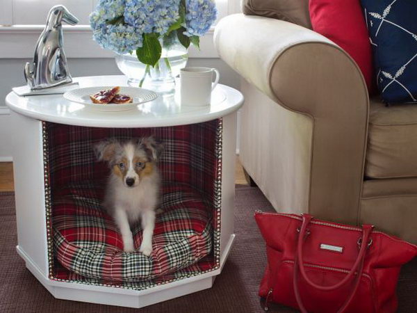 10 Make a Combination Pet Bed and End Table