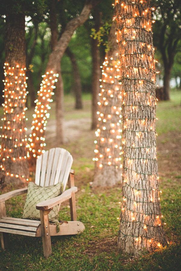 12 Amazing Tree Lights