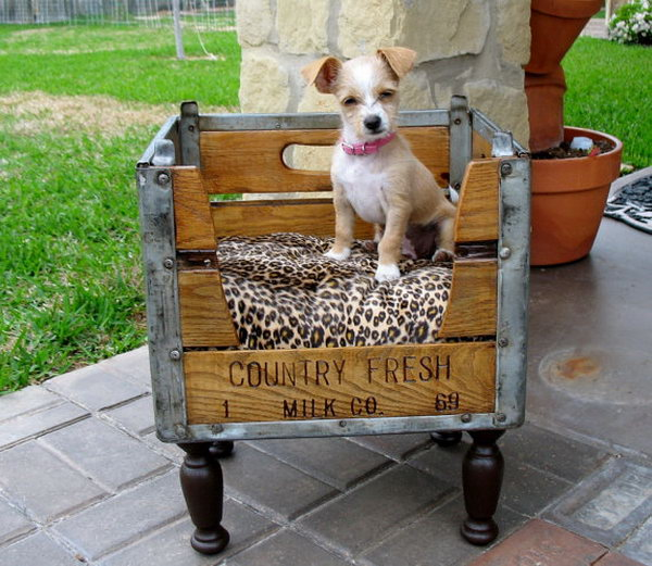 13 Pet Beds From Upcycled Crates