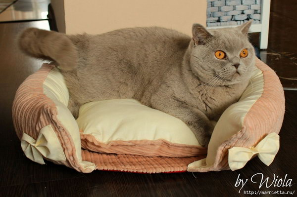 20 How To Sew A Bed For A Cat