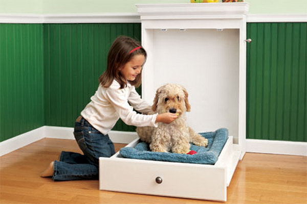 7 How to Build a Murphy Bed for Your Dog