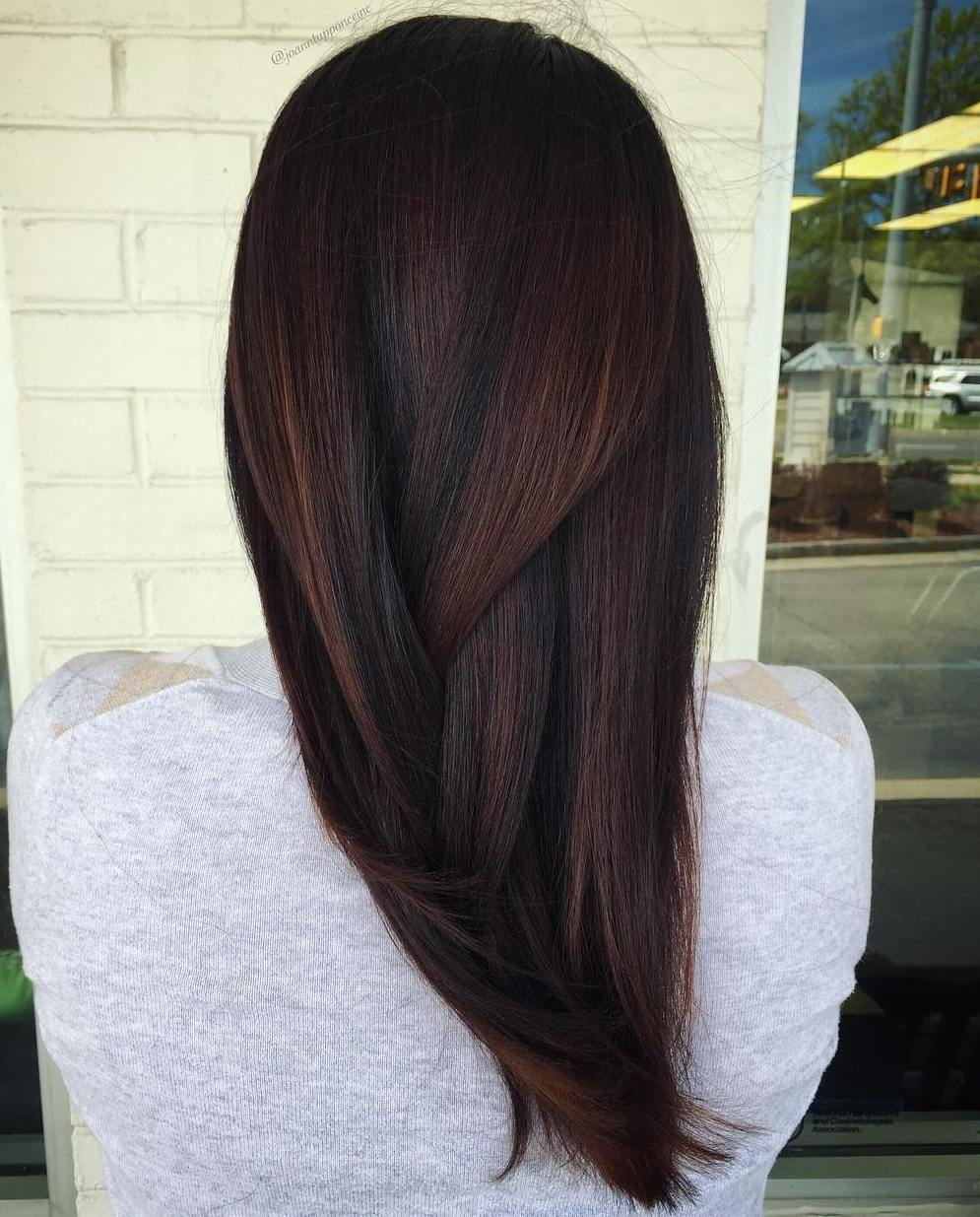 1 dark brown hair with subtle highlights