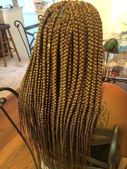 20 Best Looks Featuring Big Box Braids And Their Close Up