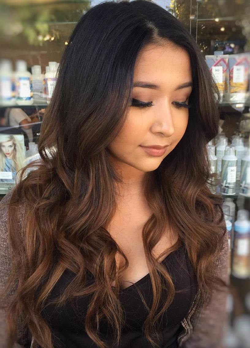 19 long black hair with brown balayage