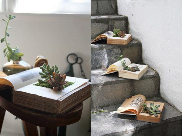 12  DIY Vintage Book Succulent Planters