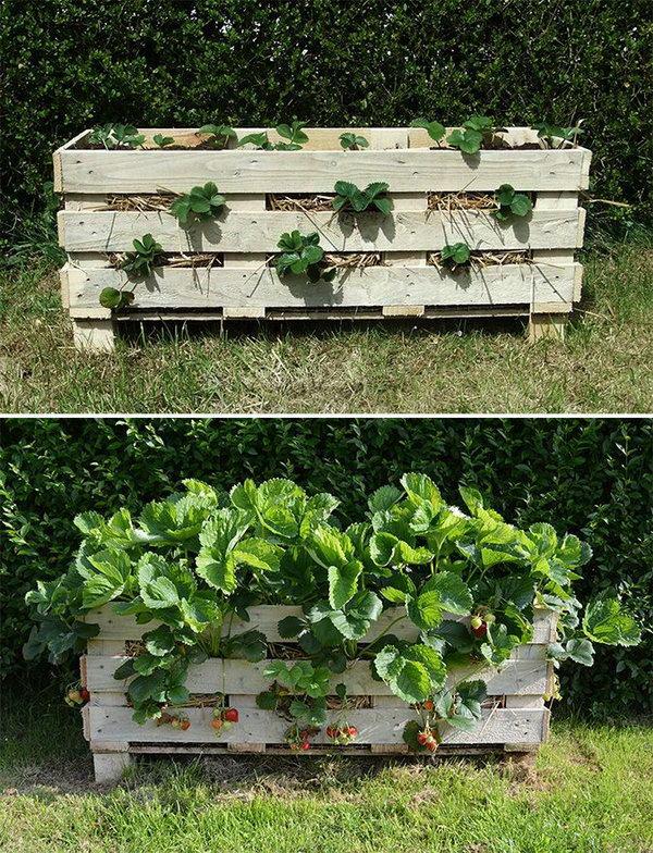 31 Repurpose Pallets into Garden Planters