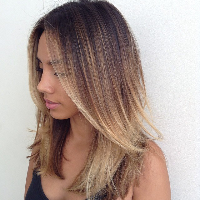 4 medium layered brown ombre hair