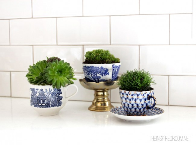 37 Teacup Planters