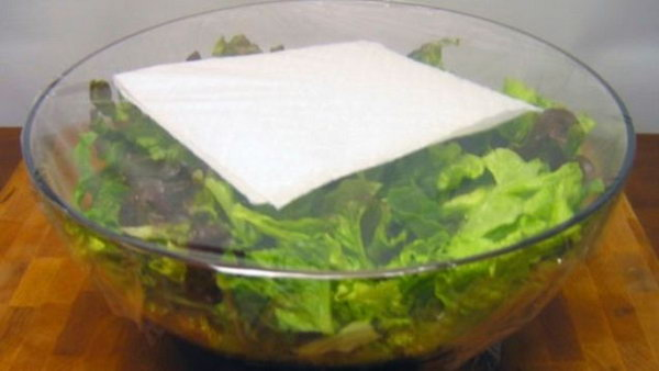 13 Use a paper towel to keep your salad lettuce fresh all week long