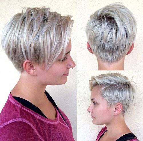 23 platinum blonde pixie bob