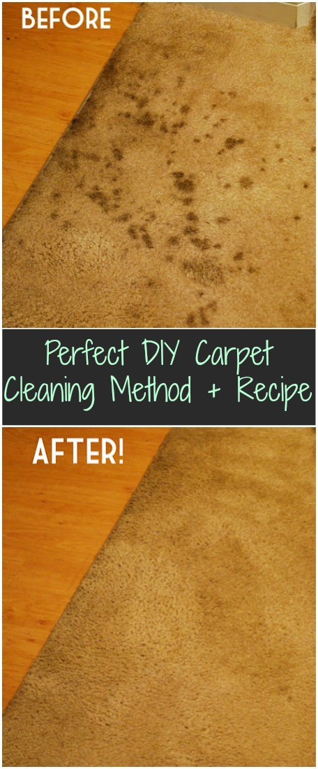 2 Homemade Carpet Cleaning Recipe