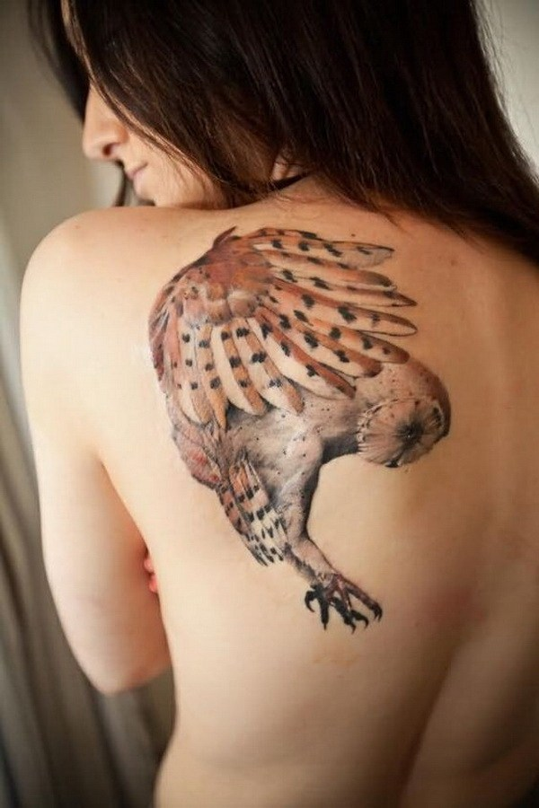 13 Original Flying Owl Tattoo On Left Back Shoulder