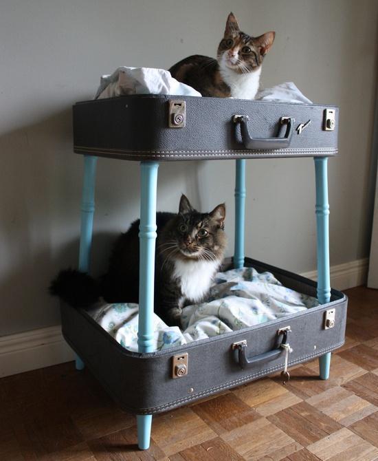 13 Creative DIY Pet Bed Ideas  and  Tutorials