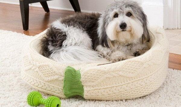 15 Creative DIY Pet Bed Ideas  and  Tutorials