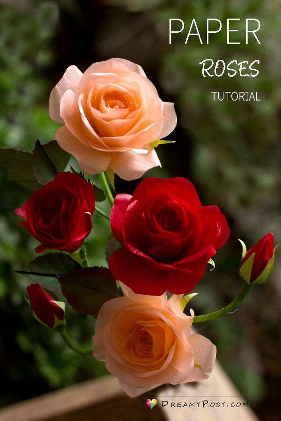 28 tissue paper Rose