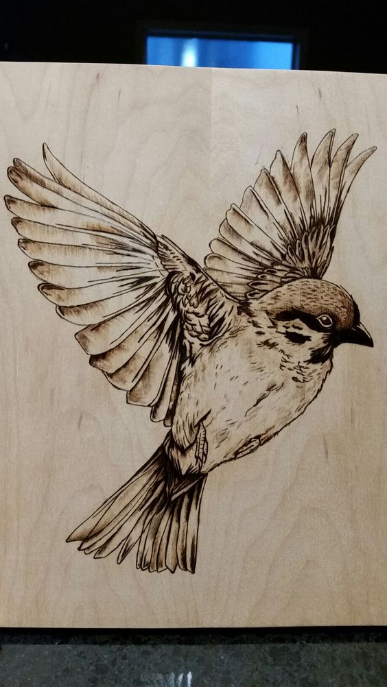 32 Wood burning Pyrography bird in flight