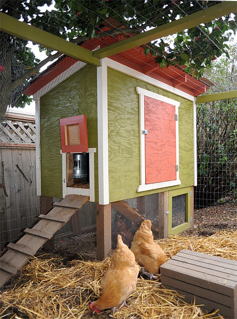 11 Creative DIY Chicken Coop Designs