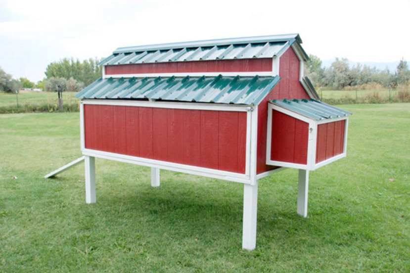 16 Creative DIY Chicken Coop Designs