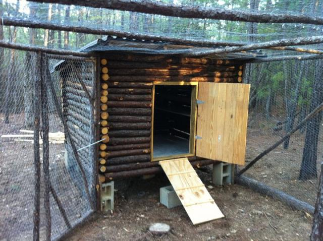 16 Log Cabin Chicken Coop