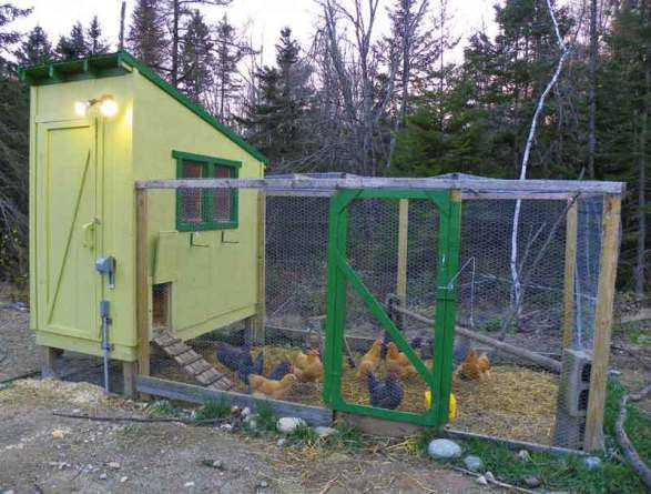 18 Downeast Thunder Farm Chicken Coop