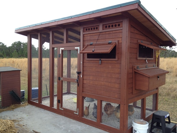 20 The Palace Chicken Coop