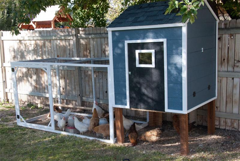 21 Cute and Chic Chicken Coop for Less Than 300