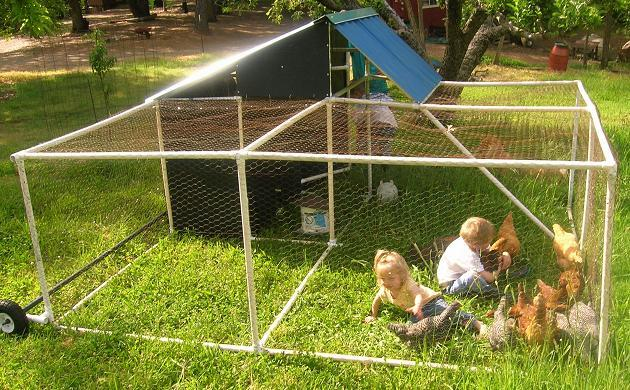 23 Portable Poultry Pen Made out of PVC Pipes
