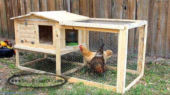 31 Small Backyard Chicken Coop