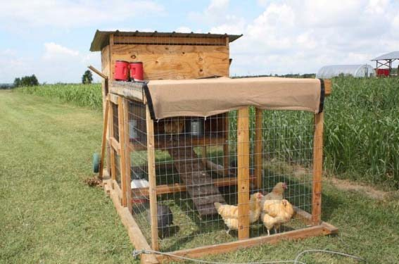 39 The Kerr Center Chicken Tractor
