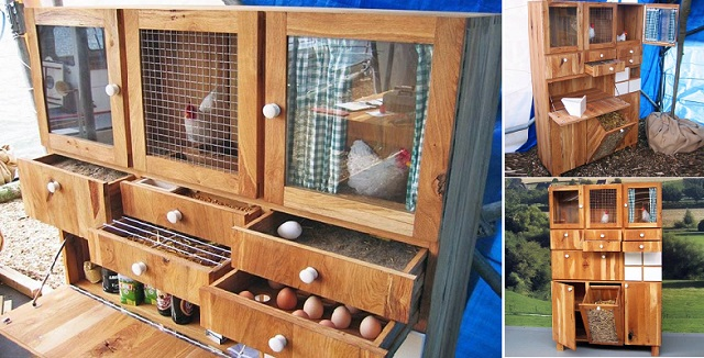 6 Creative DIY Chicken Coop Designs