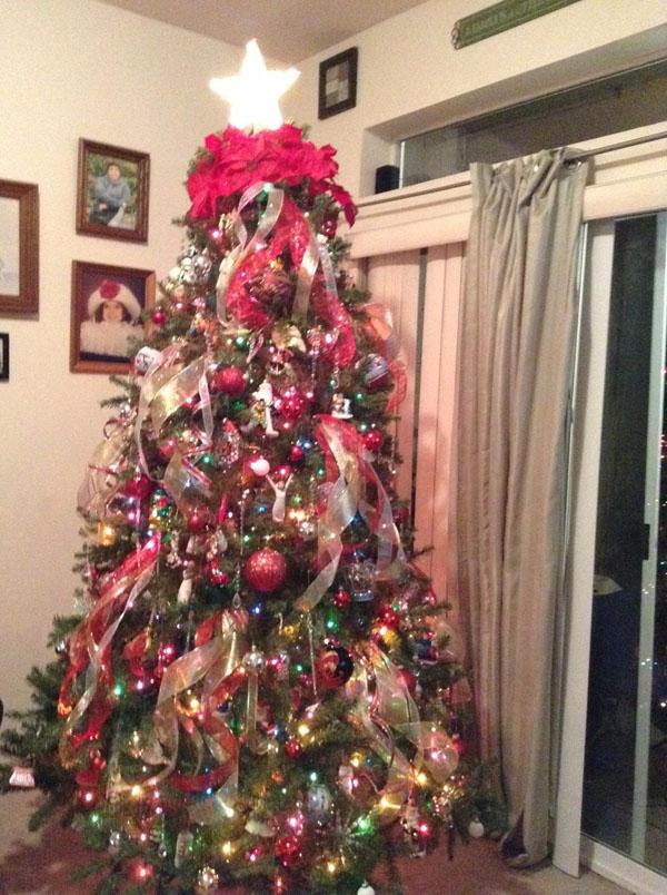 16 Dunhill Fir Tree