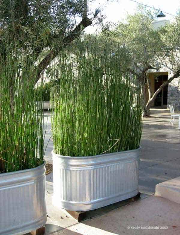 23 Genius Ways To Repurpose Galvanized Buckets and Tubs