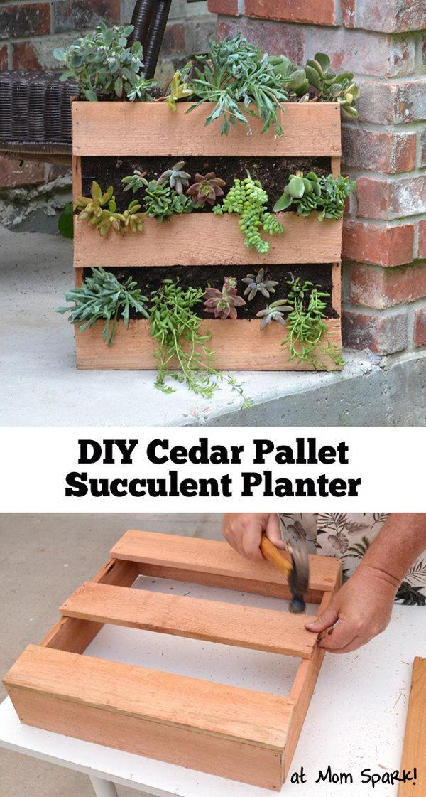 1 DIY Cedar Pallet Succulent Planter